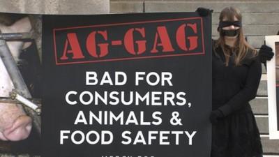 AG=GAG